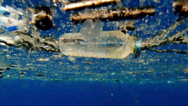 """Надія для екології: ензим, що """"поїдає"""" пластик"""